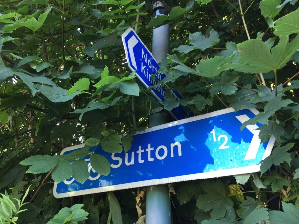 Will Sutton's draft Cycling Delivery Strategy provide the clarity to point the way towards a better cycling future?